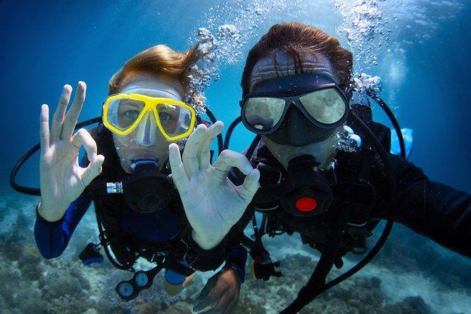 Accessoires Plongée Sous-Marine